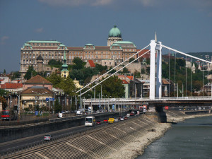 Buda Castle and Elizabet Bridge